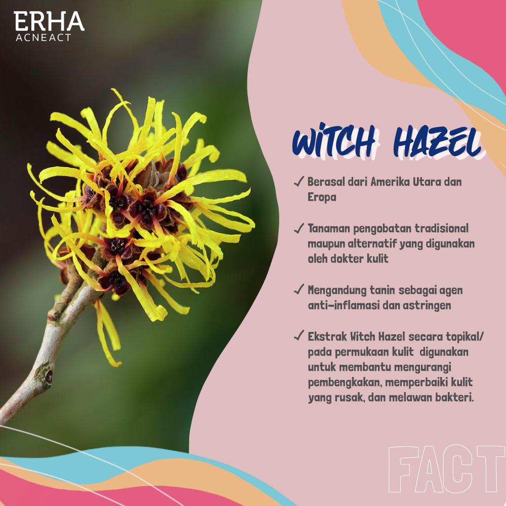 Witch Hazel Acne